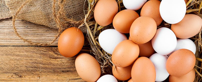 Egg Cookers & Tools