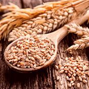 Grains, Legumes & Seeds