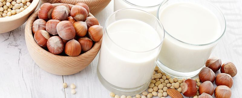 Soy & Nut Milk Makers