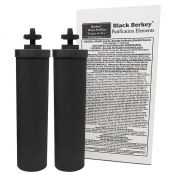 Black Berkey water purification elements