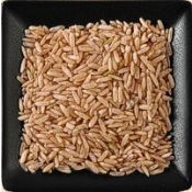 Buy bulk organic long grain brown rice