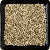 Buy bulk quinoa grain