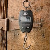 Hanging Scale Digital 330 LB
