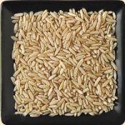 Buy bulk organic brown basmati rice