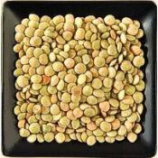 Buy bulk organic green and brown lentils