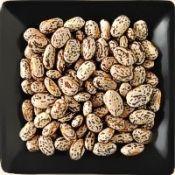 Buy bulk organic pinto beans