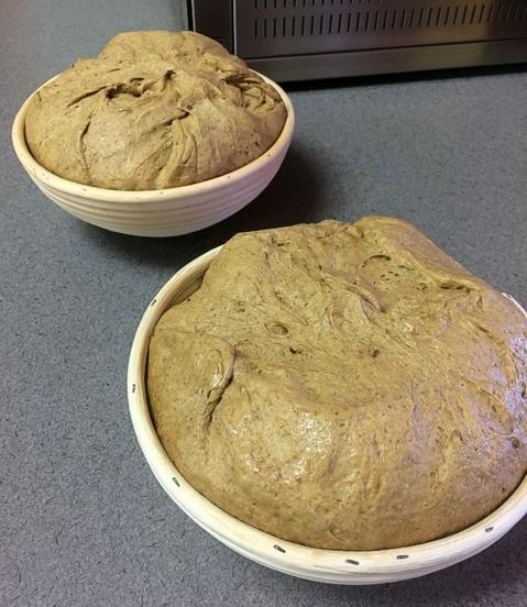 30% Whole Rye Flour Sandwich Bread