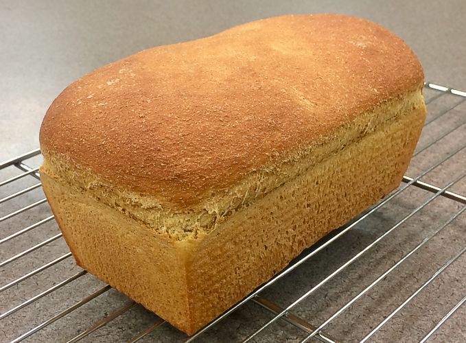 Whole Wheat Sandwich Bread — Using a Biga