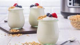 Vanilla Yogurt with Honey