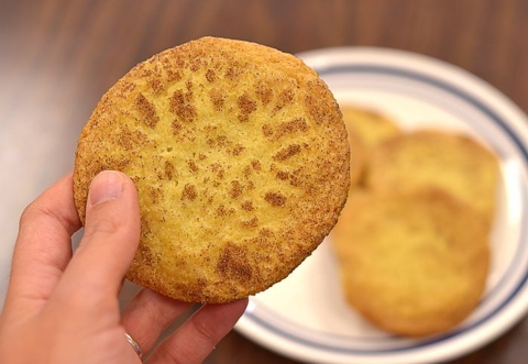 Delicious snickerdoodle cookie!