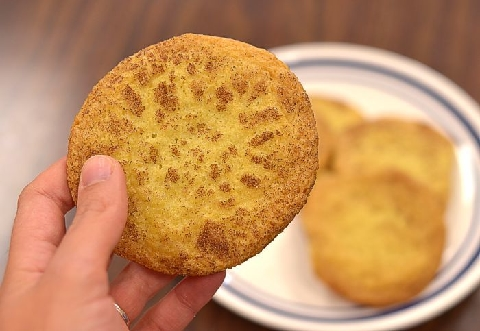 America S Test Kitchen Snickerdoodle Cookie Recipes