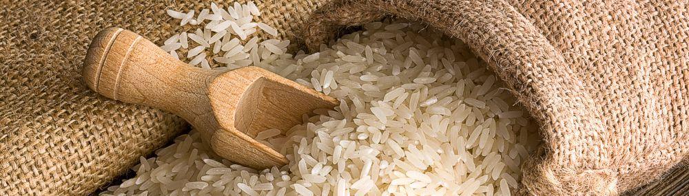 Zojirushi rice cooker comparison
