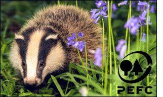 KoMo PEFC certification - badger