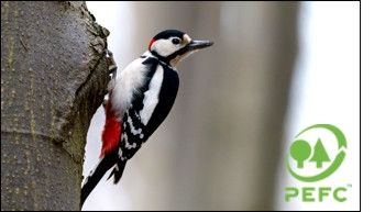 KoMo PEFC certification - woodpecker
