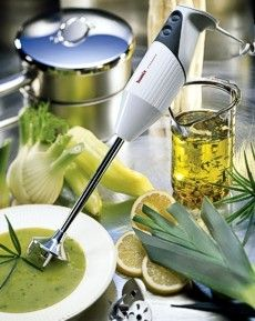 Bamix Pro NSF immersion blender