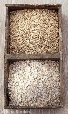 Oat groats before and after flaking in the Family Grain Mill Flaker